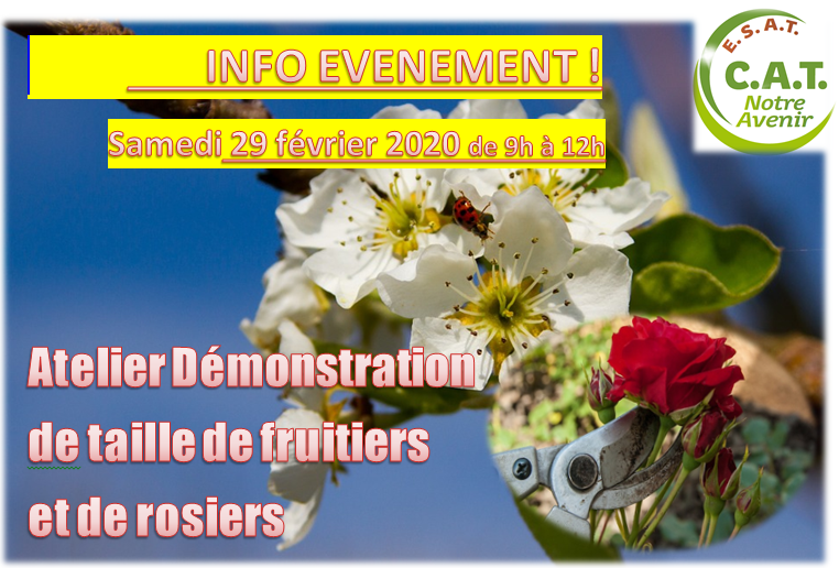 Démo taille fruitiers-rosiers 29022020